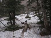 残雪と木道