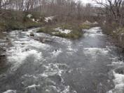 東電尾瀬橋から雪解けの川